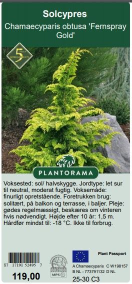 Bremmer Boomkwekerijen first hands over private label to Plantorama at IPM Essen