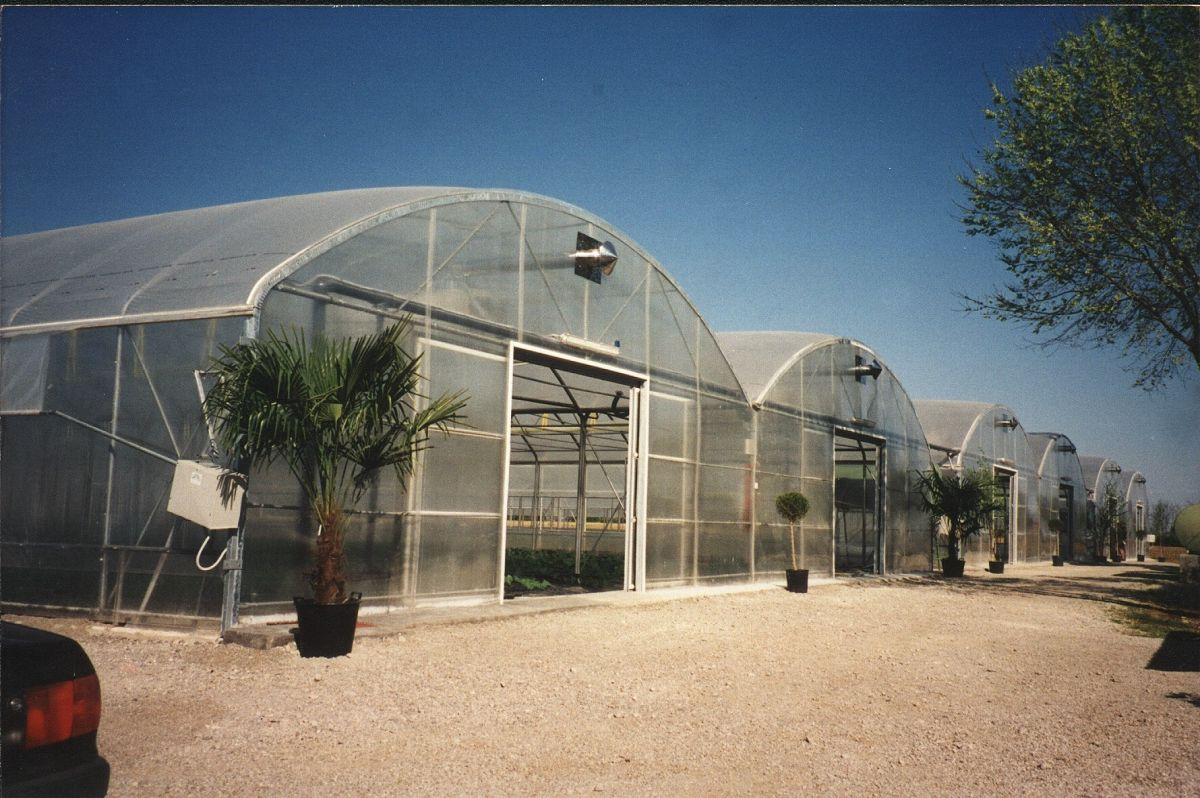 MULTISPAN GREENHOUSES WITH STRAIGHT SIDEWALLS