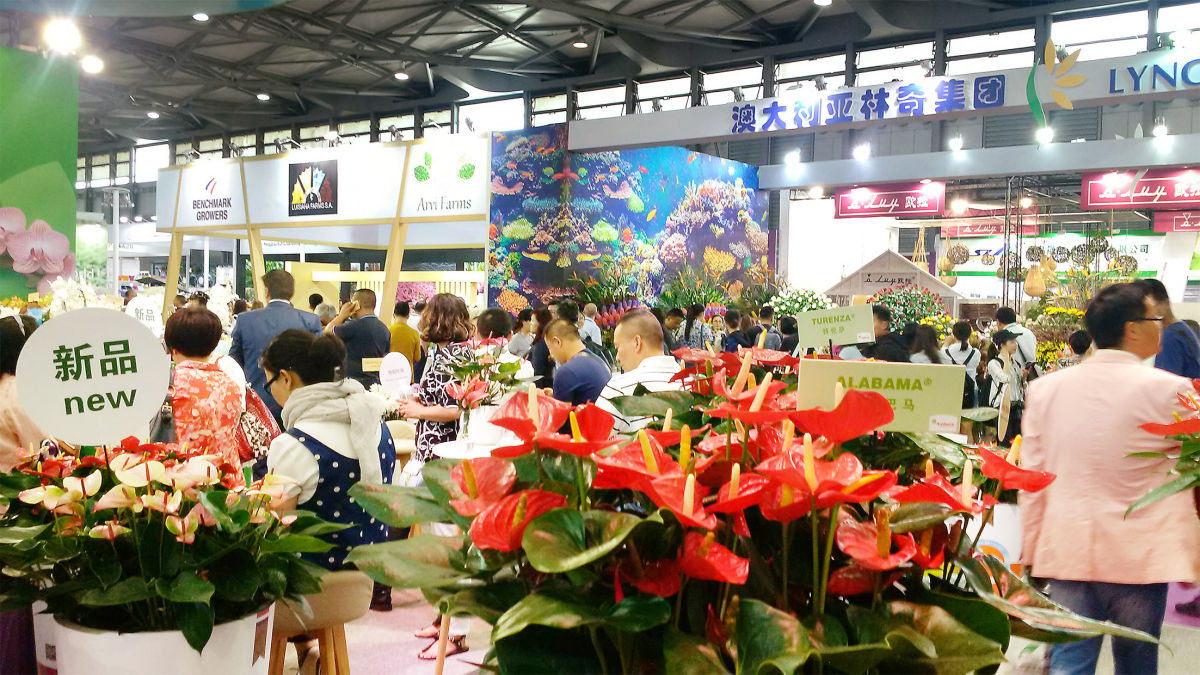 Distinct Growth in the Number of Exhibitors at Hortiflorexpo IPM Shanghai 2019