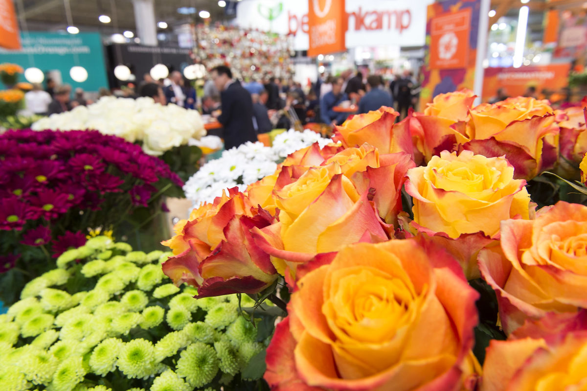 Sustainability and Climate Change Were Defining Subjects at the World's Leading Fair for Horticulture
